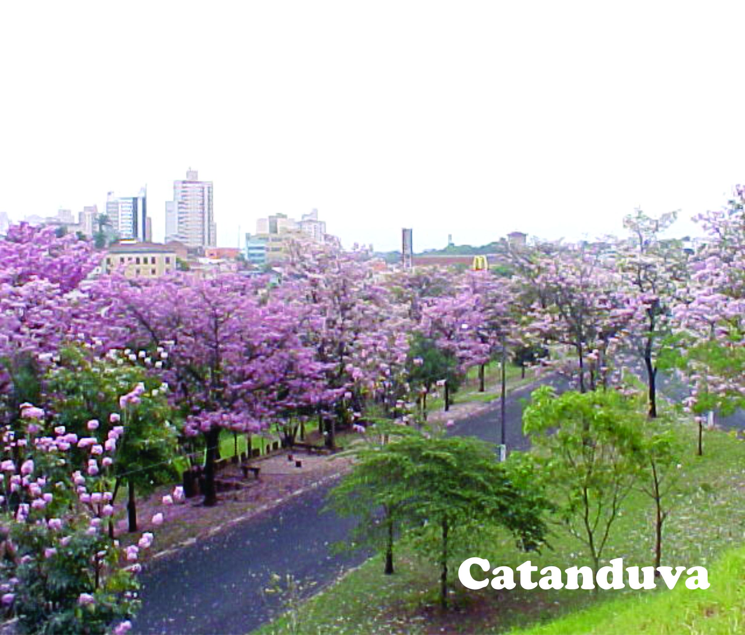 CATANDUVA